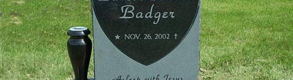 badgerweb
